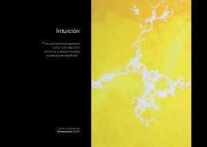 INTERIOR ELEMENTALISMO_pags_Page_6